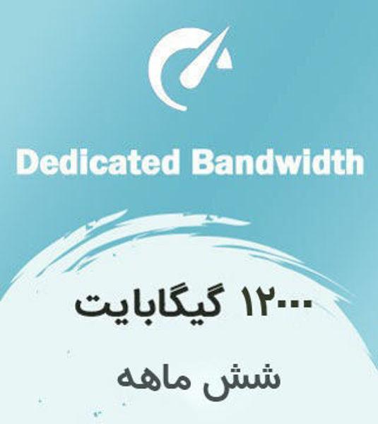 تصویر از اینترنت بیسیم اختصاصی شش ماهه با ترافیک 12000 گیگابایت بین الملل