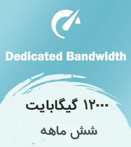 تصویر از اینترنت بیسیم اختصاصی شش ماهه با ترافیک 6000 گیگابایت بین الملل